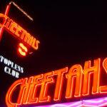The fabulous cheetahs of Las Vegas. FREE bottle service available.